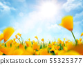 Bokeh yellow flowers background 55325377