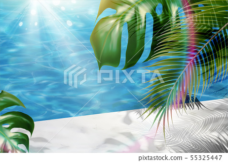 Tropical leaves and swimming pool 55325447