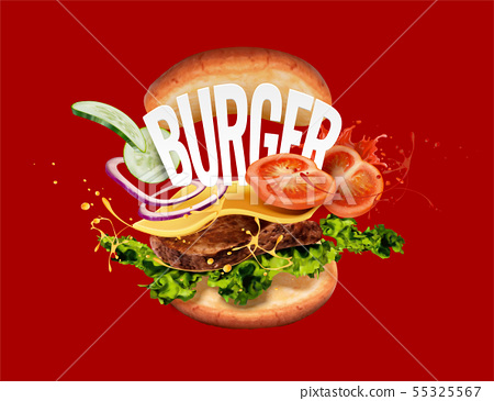 Hamburger on red background 55325567