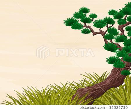 Japan pine tree scenery 55325730