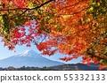 가을 단풍과 후지산 55332133