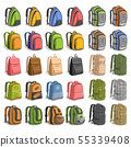 Vector set of various Backpacks 55339408