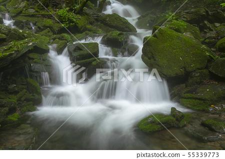 장전계곡,평창군,강원도 55339773
