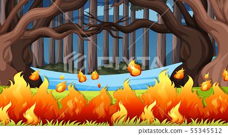 Natural environment scenes landscape 55345512