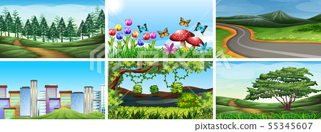Set of park, field and nature scenes 55345607