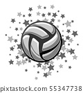 Volleyball symbol stars 55347738