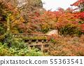 Autumn Shigasakamoto Hiyoshi Taisha 6 Omiya Bridge 55363541