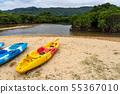 오키나와 이시가키 섬 吹通 강 맹그로브 군락 늘어선 바다 카약 55367010