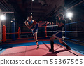 Boxers training kickboxing in the ring at the 55367565