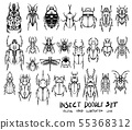 Set of insect doodle illustration Hand drawn 55368312
