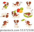 Set of cute puppy. Vector illustration on white background. 55372508