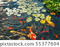 Colorful decorative fish float in an artificial 55377604