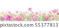波斯菊領域的水彩例證在盛開的 55377813