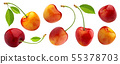 Yellow cherries with stems and leaves isolated on white background 55378703