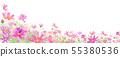 만개 한 코스모스 밭의 배경 수채화 일러스트 비대칭 55380536