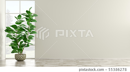 Empty interior background with plant 3d render 55386278