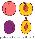 Isolated vector flat peach and plum 55388919