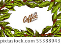 Coffee Green leaves background in vintage style. Hand drawn engraved poster, retro doodle sketch and 55388943