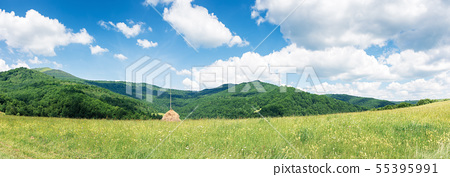 wide panorama of a rural field in mountains 55395991