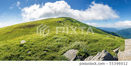 beautiful panoramic landscape in mountains 55396012