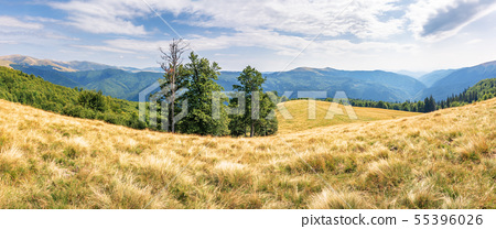 beautiful panorama of mountain landscape 55396026