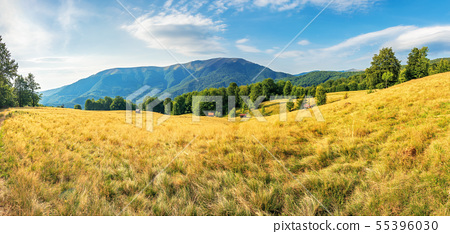 beautiful late summer landscape in mountains 55396030