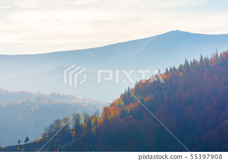 beautiful autumn afternoon in mountains 55397908