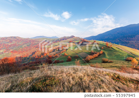 calm autumn morning in the mountains 55397945