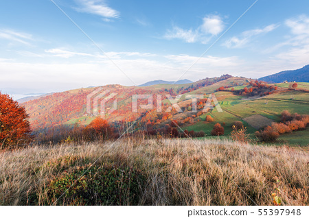 calm autumn morning in the mountains 55397948