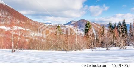 beautiful winter panorama in mountains at sunset 55397955