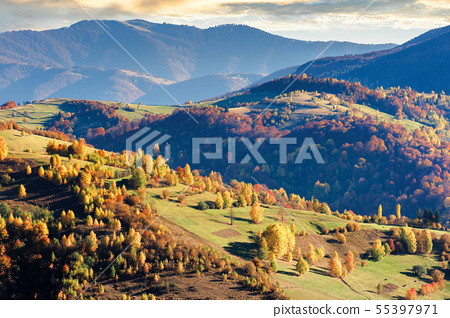 beautiful autumn scenery of a countryside 55397971