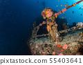 liberty Ship Wreck in bali indonesia indian ocean 55403641