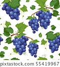 Grape vine seamless pattern and leaves on white 55419967