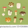 可食用的蘑菇 55436886
