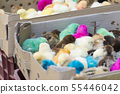Group of newborn baby chicks in thick paper boxes 55446042