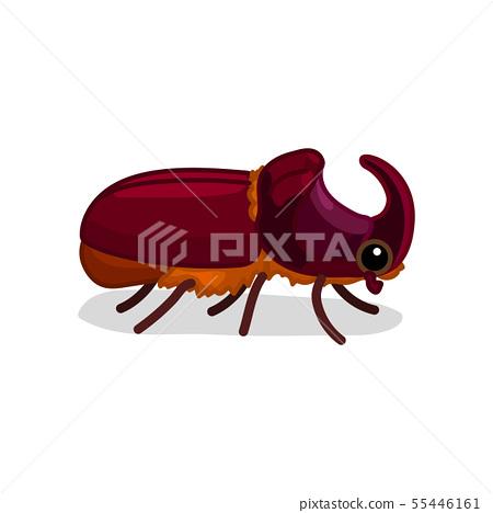 vector cartoon insect clip art 55446161