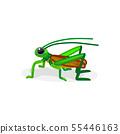 vector cartoon insect clip art 55446163
