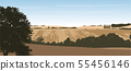 Realistic vector illustration of a hilly landscape 55456146
