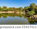 Meisho Gennomiya Ebi-en Fallen leaves 55457421