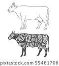 Beef cuts diagram. Hand drawn butcher cuts scheme 55461706