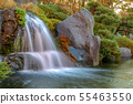 Close up beautiful waterfall and forest change 55463550