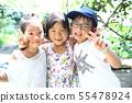 วันหยุดฤดูร้อน 55478924