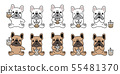 개, 강아지, 프렌치 55481370