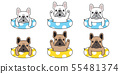 개, 강아지, 프렌치 55481374