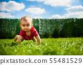 Child, Toddler, boy 55481529