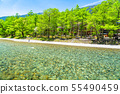長野長野縣清初的Kamikoda和Yodogawa的淡水和新鮮綠葉 55490459