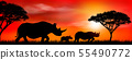Group of african rhinos at sunset 55490772