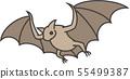 蝙蝠 55499387