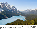 Spring aerial view of the Peyto Lake - Banff 55500504