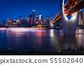 Modern skyline of city of Chongqing in China  55502640